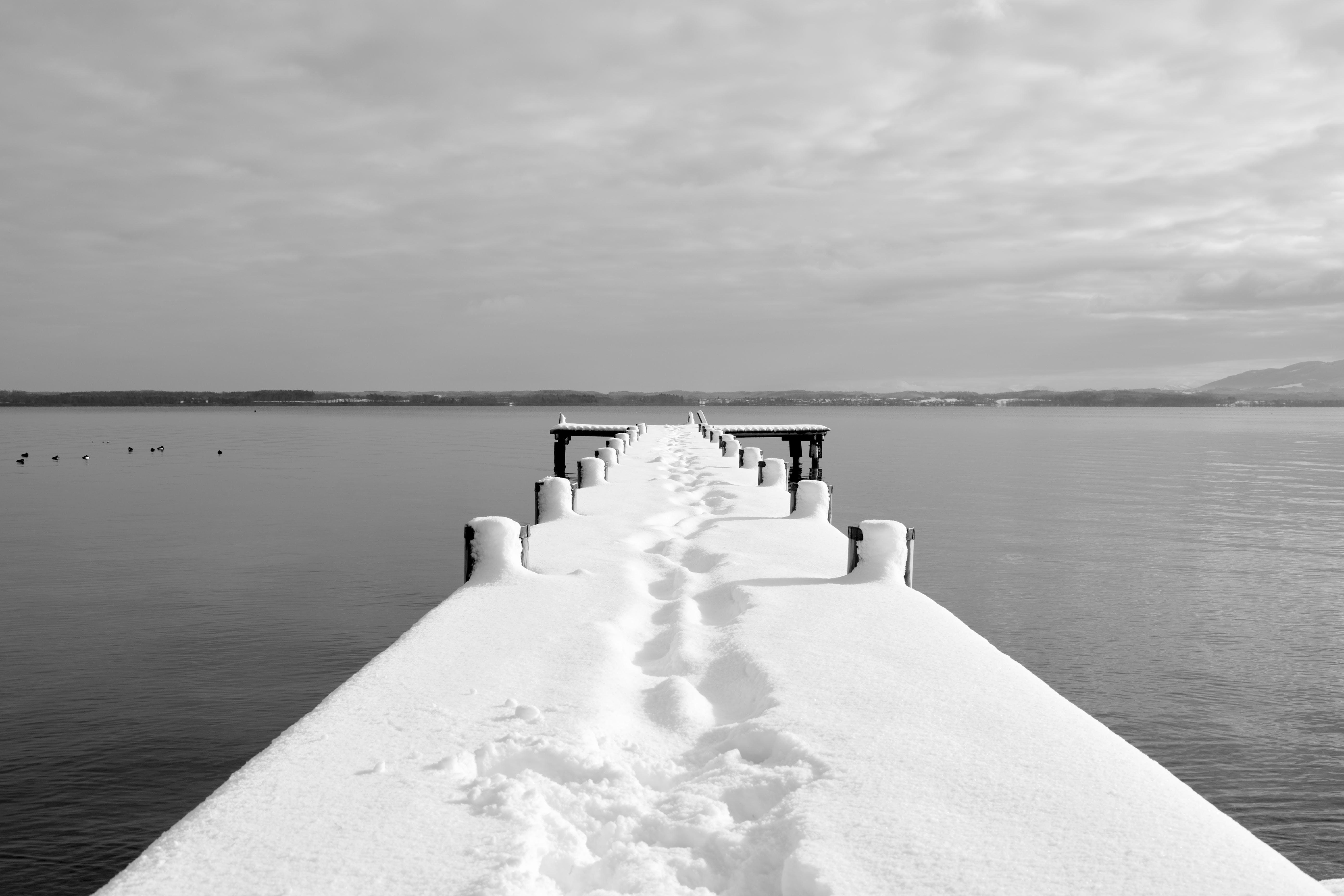 Grayscale of Dock Bridge
