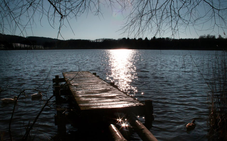 New free stock photo of jetty, light, dawn