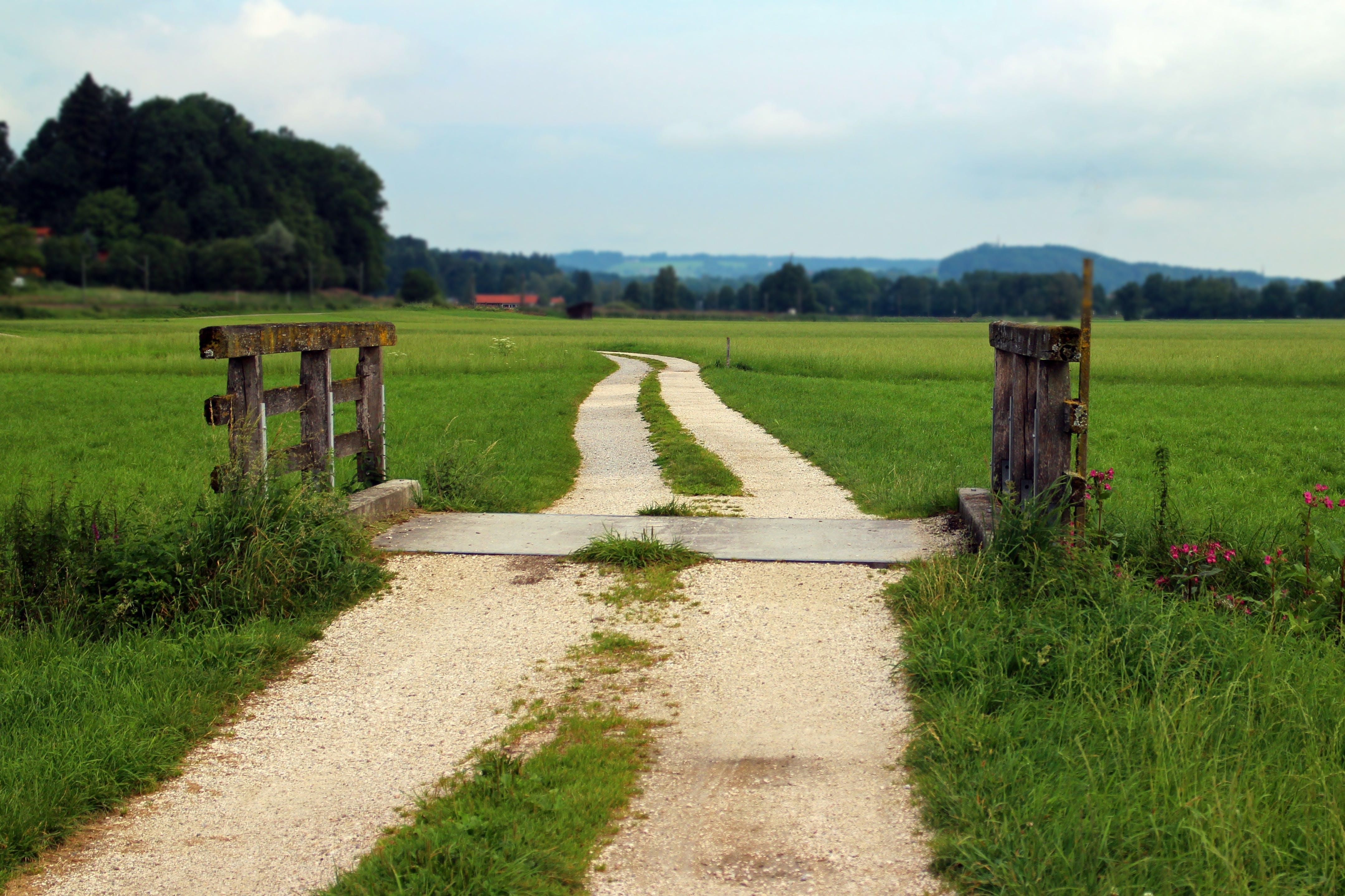 agriculture, barn, boardwalk