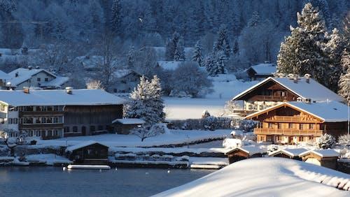 ağaçlar, banka, binalar, buz içeren Ücretsiz stok fotoğraf