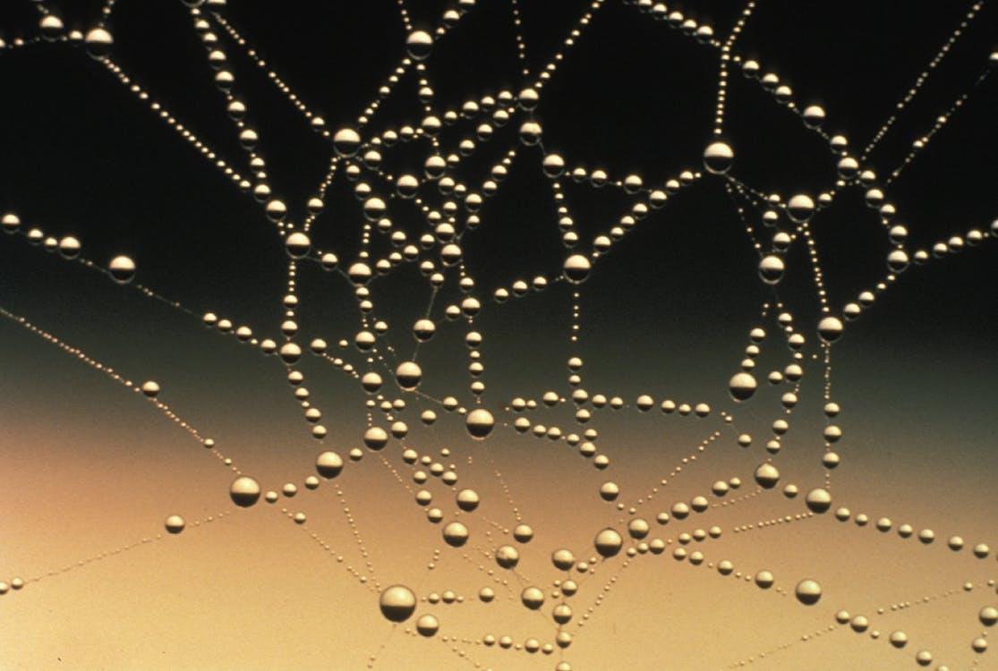 abstrakti, ansa, hämähäkinseitti