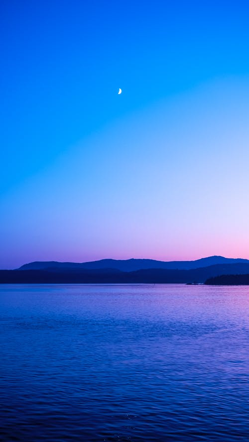 Gratis lagerfoto af bc færger, blå, færge, golføer
