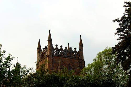 Foto profissional grátis de abadia, abadia dunfermline, cova, escócia histórica