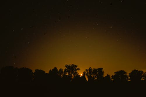 Foto stok gratis bulan sabit, cahaya hangat, fotografi malam, langit