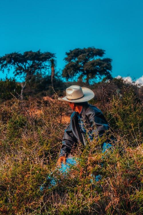 경치, 고민하는, 나무, 남자의 무료 스톡 사진