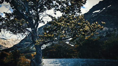Free stock photo of lake, landscape, mountains, nature