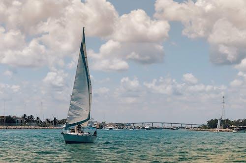 Бесплатное стоковое фото с ветер, вода, голубой, катание на лодке