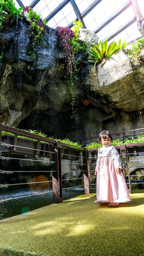 Free stock photo of girl, kids, korea outfit