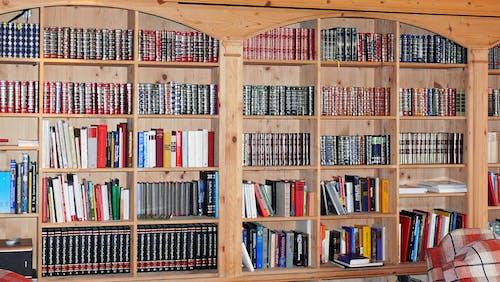 Fotos de stock gratuitas de biblioteca, estantería con libros, estanterías para libros, habitación