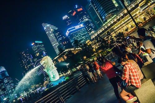 Ingyenes stockfotó éjszakai fotózás, épületek, kültéri fotózás, merlion témában