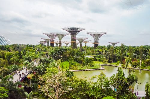 Free stock photo of Asian architecture, gardens by the bay, lagoon