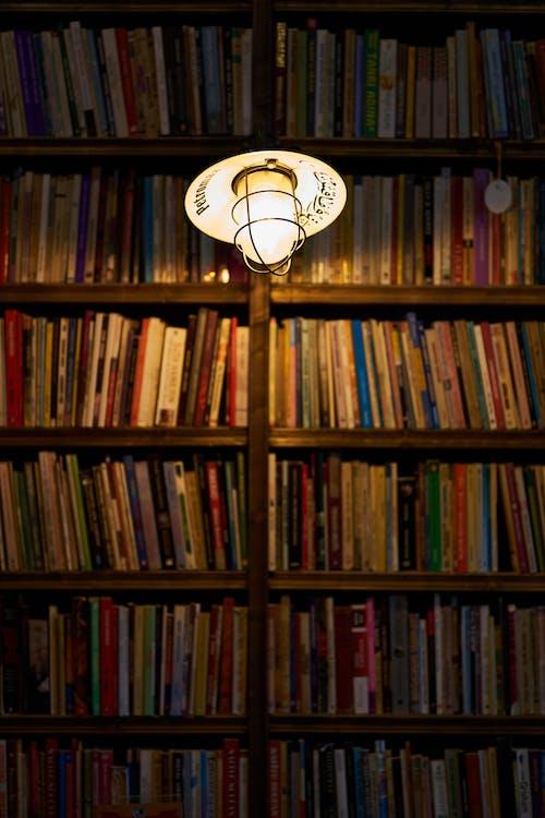 ánh sáng, bóng đèn, giá sách