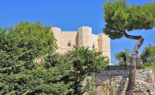 Gratis arkivbilde med slott