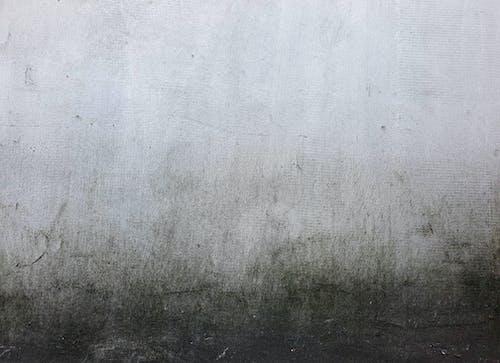 Foto d'estoc gratuïta de ciment, formigó, mur, rugós