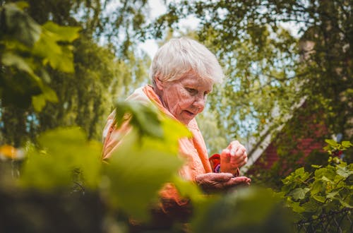 Shallow Focus Photo of Woman Near Plants