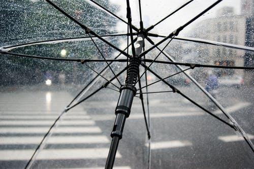 Black Frame Umbrella