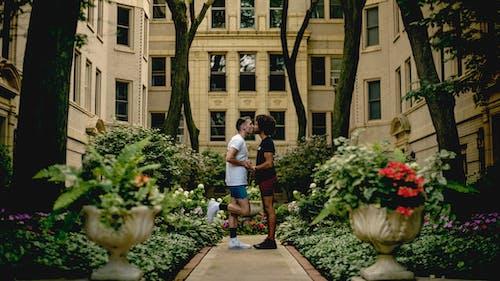 Foto stok gratis Arsitektur, bangunan, berciuman, bergandengan tangan
