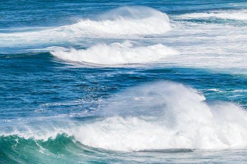คลังภาพถ่ายฟรี ของ fuerteventura, การกลิ้ง, การท่องเที่ยว, การเคลื่อนไหว