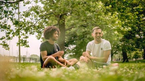 공원, 기쁨, 꽃, 다양성의 무료 스톡 사진