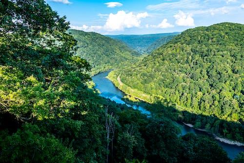 ağaçlar, akarsu, dağlar, ırmak içeren Ücretsiz stok fotoğraf