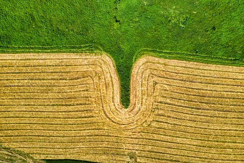 Aerial Photography of Cultivated Land