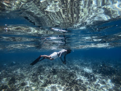 Δωρεάν στοκ φωτογραφιών με snorkeling, άθλημα, αναψυχή, άνδρας