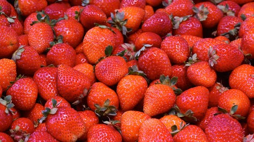 Red Strawberry Lot