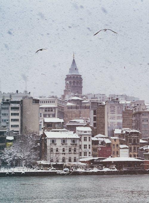 Kostnadsfri bild av arkitektur, byggnader, flod, kall