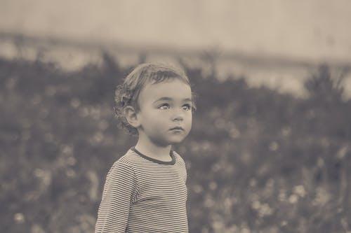 Безкоштовне стокове фото на тему «веселий, вираз обличчя, дитина, дитячий майданчик»