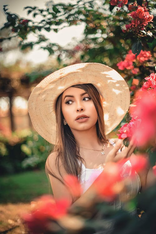 Fotos de stock gratuitas de belleza, bokeh, bonita, bonito
