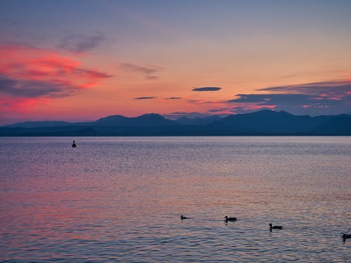 Бесплатное стоковое фото с scenin, апельсин, бардолино, берег