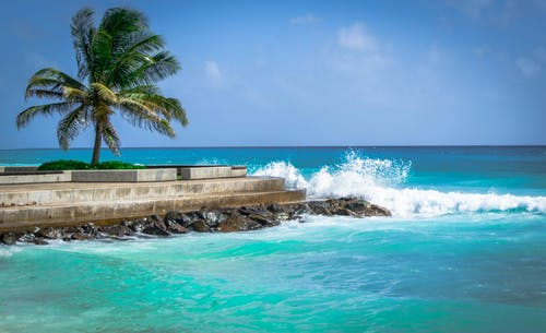 Free stock photo of barbados, island, jetty, ocean