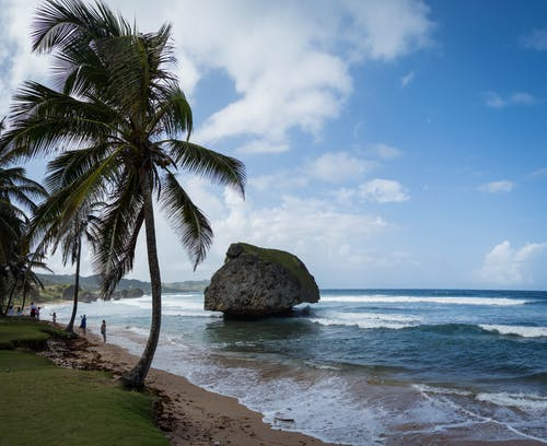 Free stock photo of barbados, bathsheba, beach, beautiful