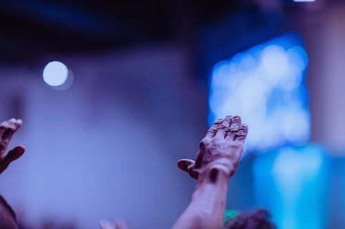 ほめる, ぼかし, インドア, コンサートの無料の写真素材