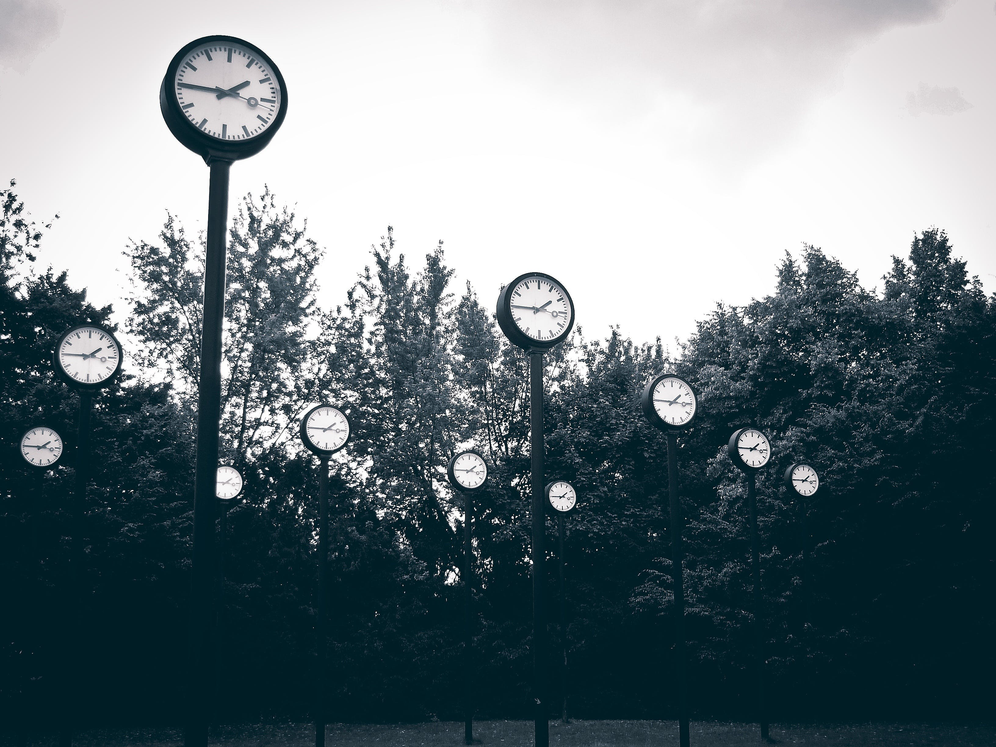 Gray Scale Photography of Clock Near Trees