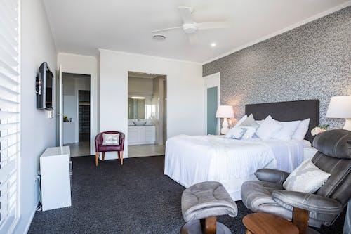 Immagine gratuita di camera, casa accogliente, decorazione per la casa, interni casa