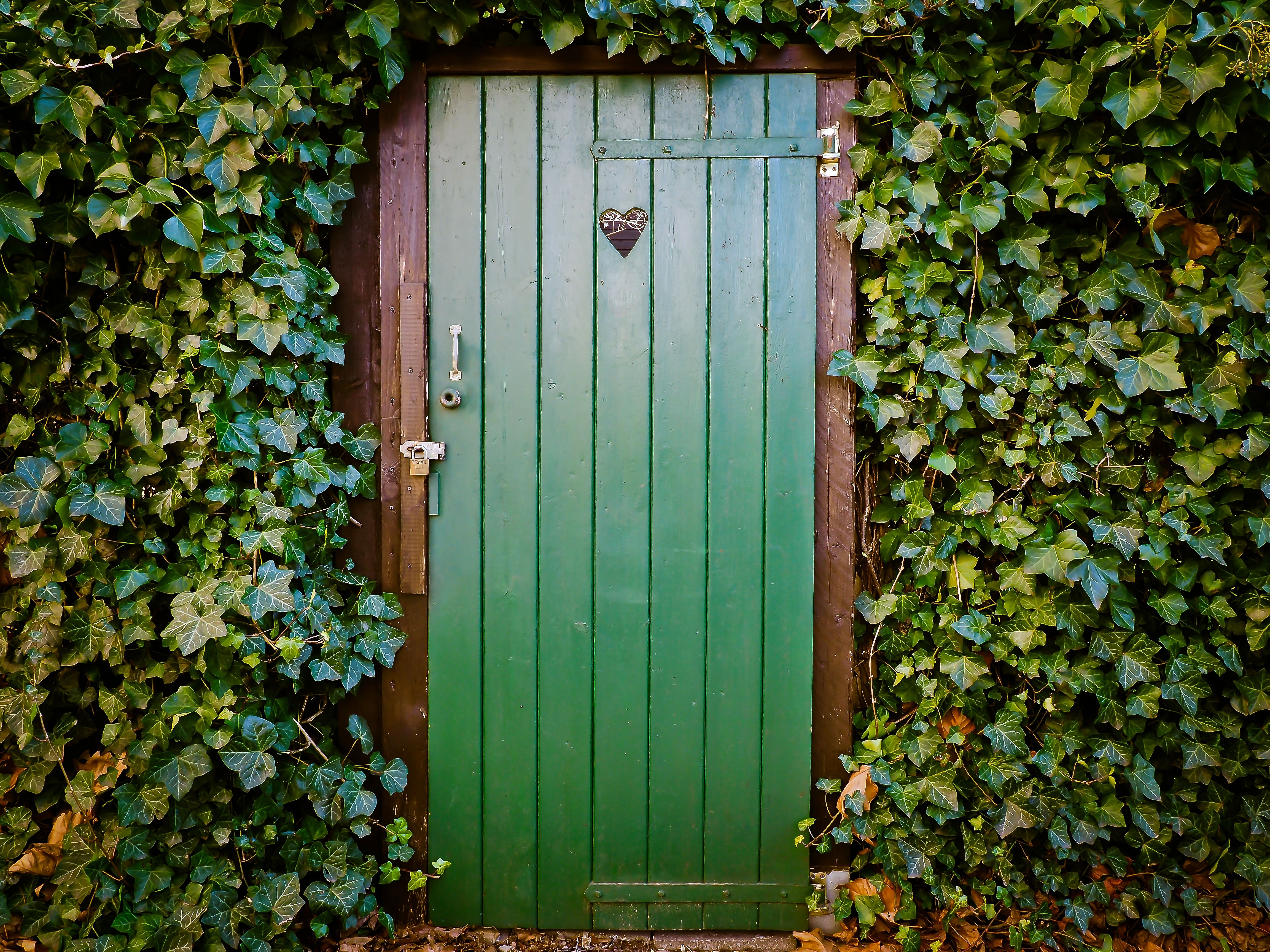 Free stock photo of wood heart exit wall & Awesome Door Images · Pexels · Free Stock Photos