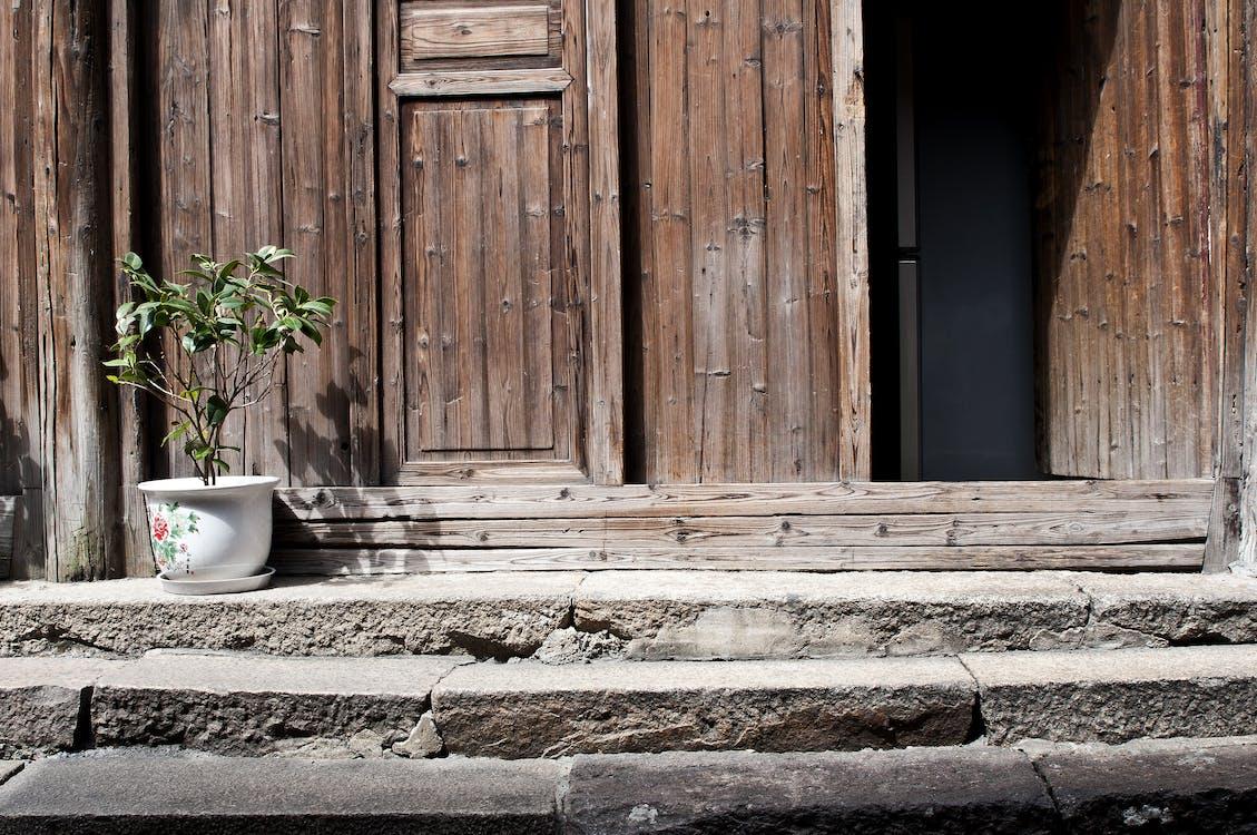 architectuur, binnenkomst, bloempot