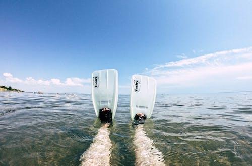 Безкоштовне стокове фото на тему «greeen, вода, Дайвінг, плавання»