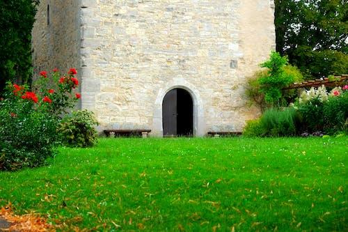Ảnh lưu trữ miễn phí về bãi cỏ, cỏ, cửa, gạch