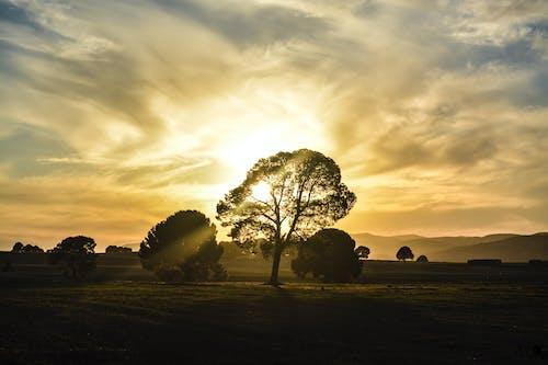Free stock photo of ain tindamine, Beautiful sunset, cloud, cloudy sky