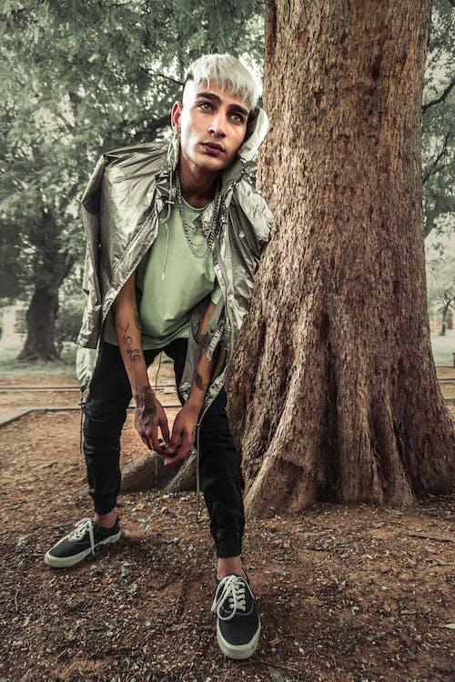 Imagine de stoc gratuită din adult, arătos, arbore, bărbat