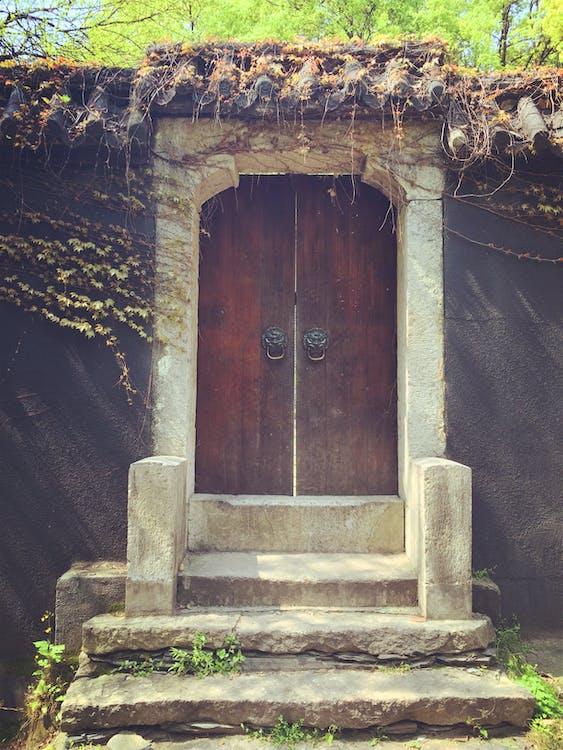 bậc thang, cổng vào, cửa