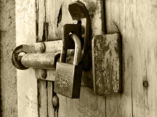 保全, 原本, 掛鎖, 烏賊 的 免費圖庫相片