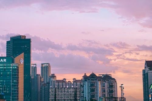Foto profissional grátis de capital, céu, céu rosa, cidade