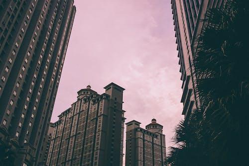 公寓樓, 商業, 地標, 城市 的 免費圖庫相片
