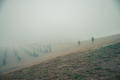 人, 健康的生活型態, 公園, 有雾的早晨 的 免费素材照片