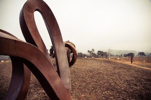 Foto d'estoc gratuïta de arboretum nacional de canberra, atracció, bici, boira