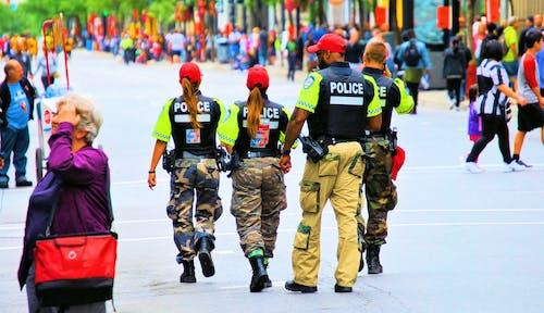 Foto d'estoc gratuïta de acció, Administració, agrupar, aplicació de la llei