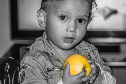 Kostenloses Stock Foto zu apfel, gelb, große augen, jung
